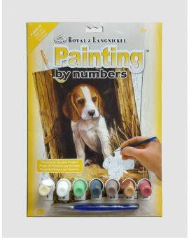 Junior paint by numbers- Beagle puppy