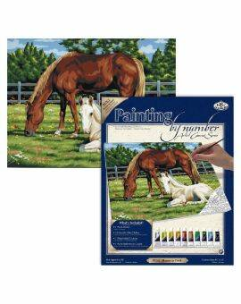 Painting by numbers canvas- paarden